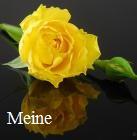 Medium Meine
